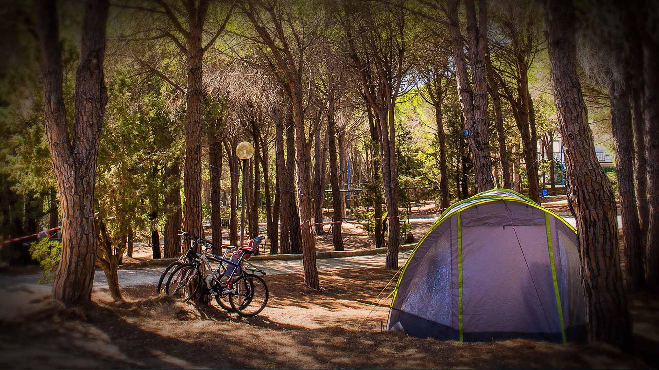 Come organizzare il campeggio migliore